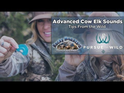 How To Make Elk Sounds With Kristy Titus- Elk Call Tips - YouTube