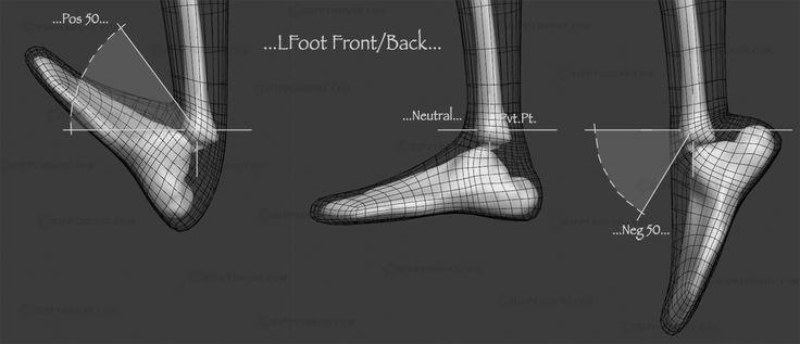 #HippyDrome.com Foot Front Back Range of Motion Wires