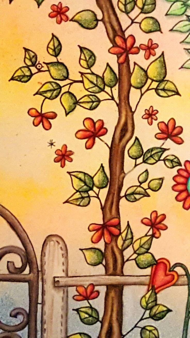1040 Best Secret Garden Coloring Book Images On Pinterest