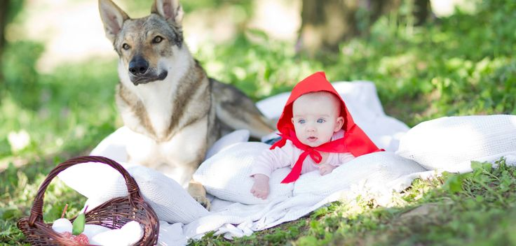 Little Red Riding Hood  #real #baby #outdor  www,mamochotena.pl