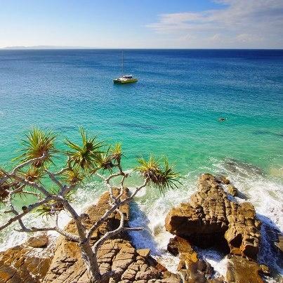 Noosa National Park | Visit Noosa  Amazing walks & beaches. #bespokehunter