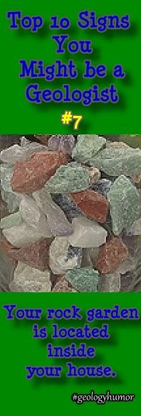 Top 10 Signs You Might be a Geologist: #7 - Your rock garden is located inside your house.  Click here for more geology fun! http://minimegeology.com/