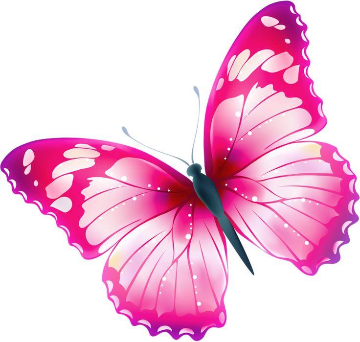 hd cute pink butterfly - photo #21