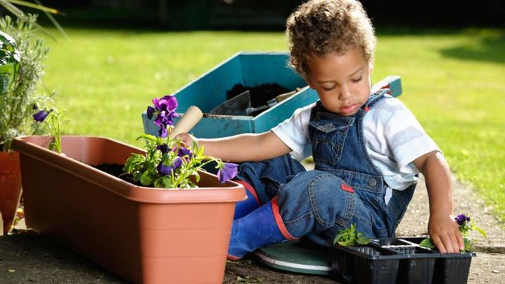 Teach Your Child How to Grow Plants With This Unique Product