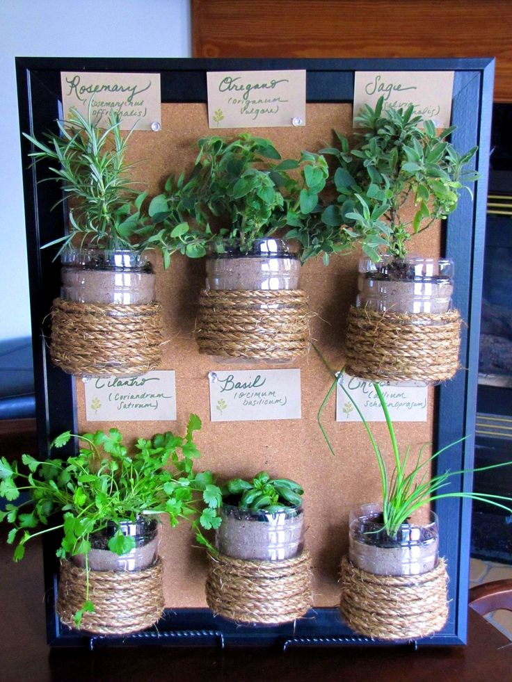 1000 Ideas About Wall Herb Gardens On Pinterest Herbs