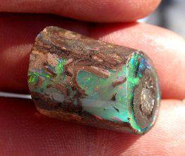 183 best Opalized Wood images on Pinterest   Gemstones ...