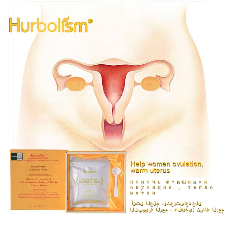 Hurbolism New Update Herbal Powder for Warm Womb Ovulation,Warm ...