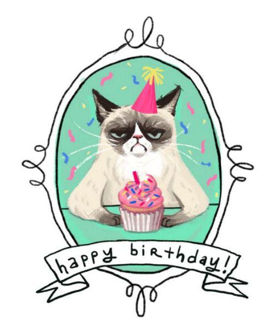 angry, bday, birthday, cake, cat, celebrate, funny, grumpy, happy, happy cat