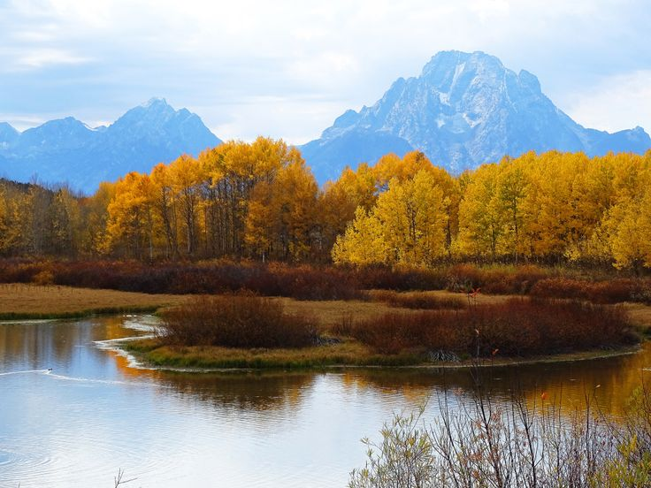 Grand Tetons in the Fall~ See: http://cindyknoke.com/2015/09/28/the-elk-are-bugling/