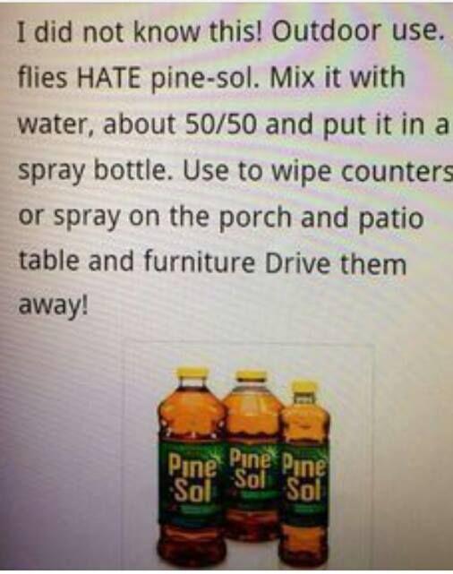 Get rid of flies outside!