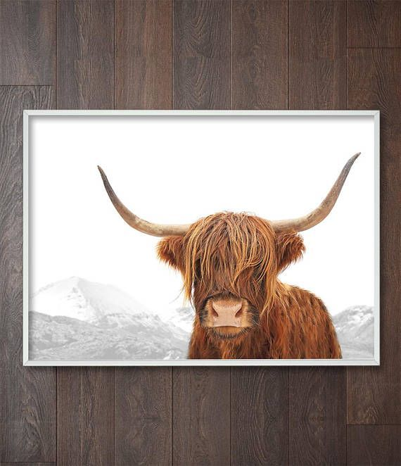Scottish Highland Cow Art | Highland Scotland | Highland a Cow Print | Scottish Highland | Highland Cow Photography | Highland Cattle | Highland Decor | Highland Cow Picture. Wall Art Print by Little Ink Empire on Etsy