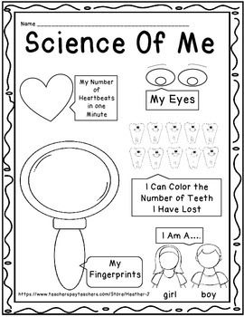 Science Of Me! Color your eyes, stamp your fingerprint, count your heartbeats! Only $1 from TeachersPayTeachers.com