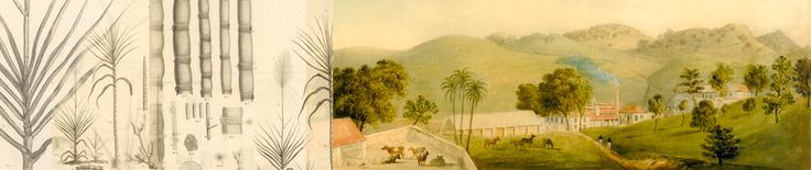 Beyond Sweetness | New Histories of Sugar in the Early Atlantic World