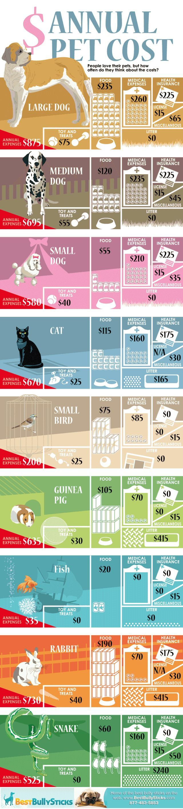 #Business #Infographics - What Is Your Pet Costing You? #Infografia