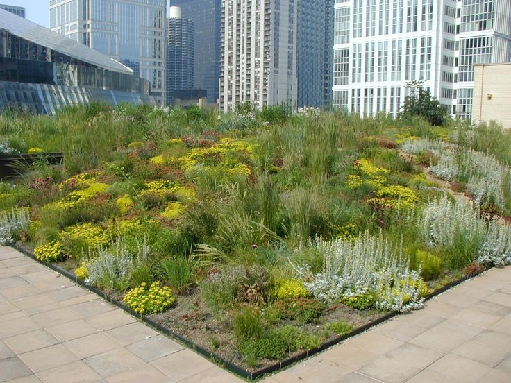 there are many roof garden design ideas using which you can create a roof garden you can also refer to roof garden design photos for rooftop garden design - Garden Design Usa