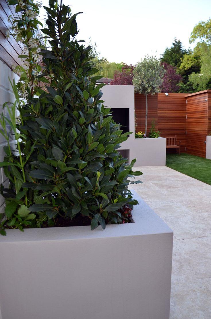 Chic modern garden design in chelsea by declan buckley with steps and - Garden Design Chelsea Fulham Hammersmith Wandsworth London