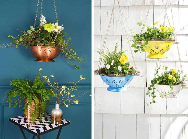 Floating garden creato utilizzando scolapasta come vasi