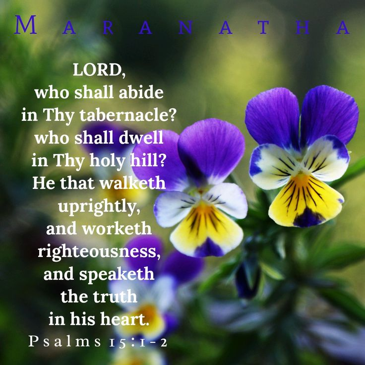 #Psalms 15:1-2 (KJV)  LORD, who shall abide in thy tabernacle? who shall dwell in thy holy hill? He that walketh uprightly, and worketh righteousness, and speaketh the truth in his heart.