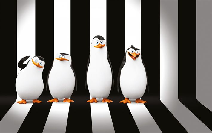 Descargar fondos de pantalla Los pingüinos de Madagascar personajes, 3d pingüinos