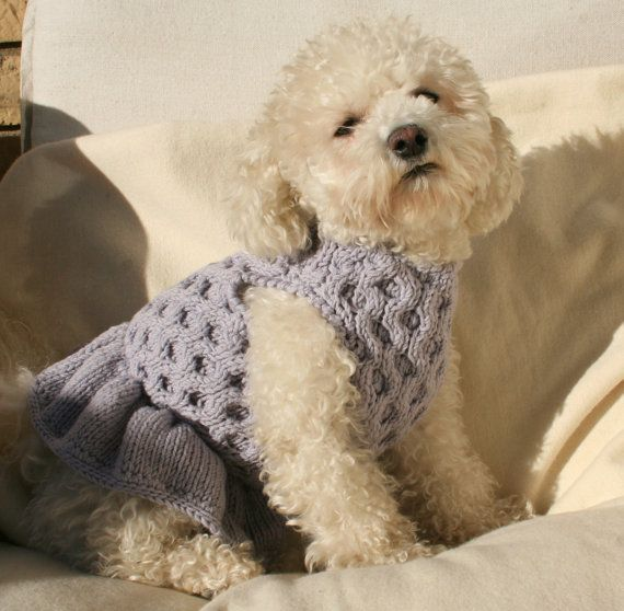 Dog Dress Pet Clothing  Hand Knit Dog Clothes by by BubaDog