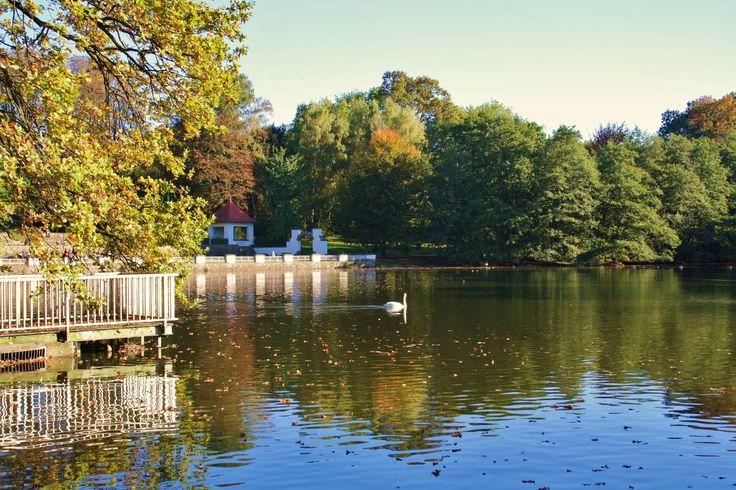 wonderful hangeweiher park in aachen