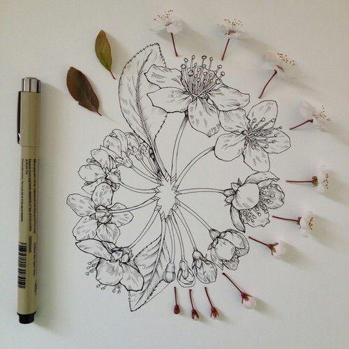 53 mejores imgenes de Draw en Pinterest  Dibujos Ilustraciones