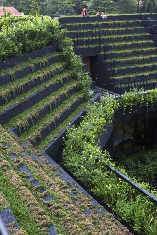 Cornwall Gardens CHANG Architects