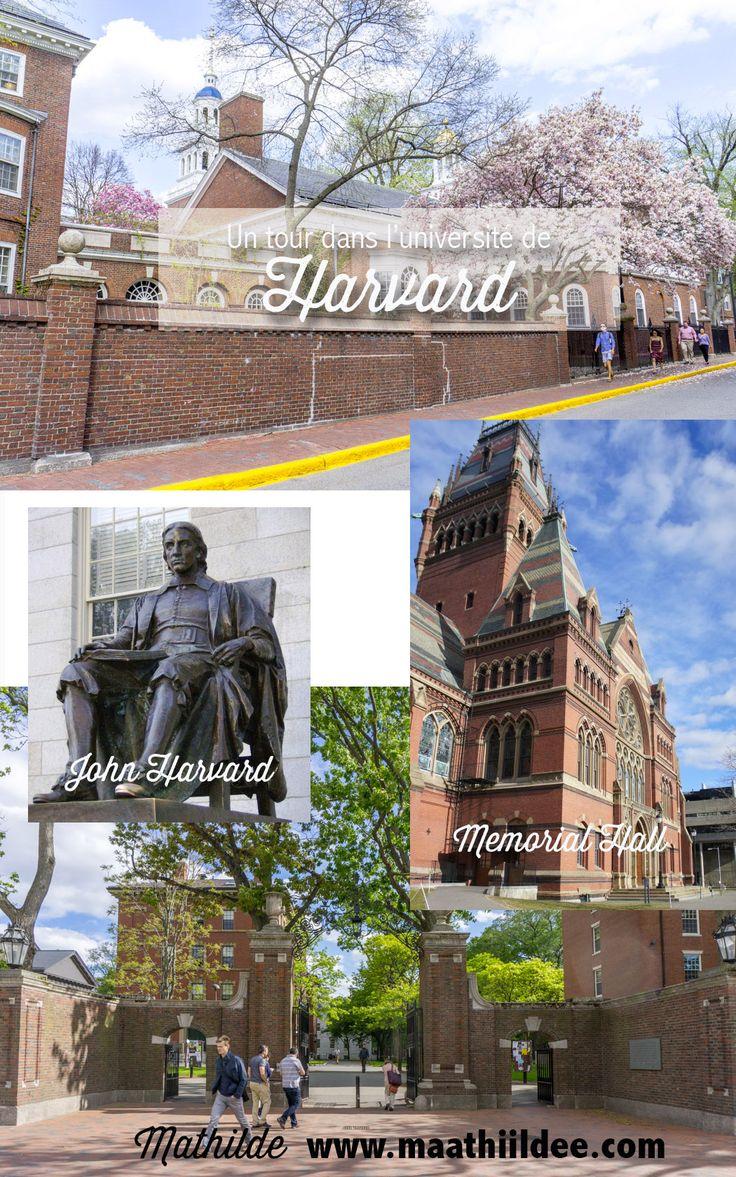 Visiter la célèbre université américaine, à Cambridge, à côté de Boston.