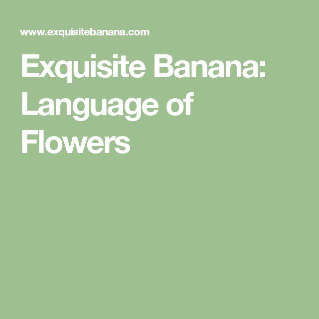 Exquisite Banana: Language of Flowers