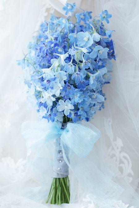 茎を束ねて、長めに作るブーケをアームブーケと呼びます。デルフィニウム、という花だけ、でもそのデルフィニウムのいろんな種類を集めて束ねる、夏の、青いブーケで...