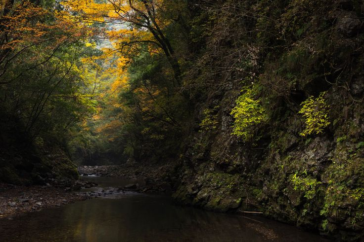 [OC] Small hidden valley in Kochi, Japan (7360x4912) : EarthPorn