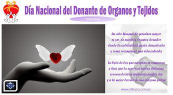 23 de Mayo Día Nacional del Donante de Órganos y Tejidios