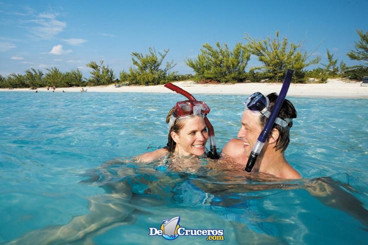 Snorkel en Caribe http://www.decruceros.com/navieras/1/1