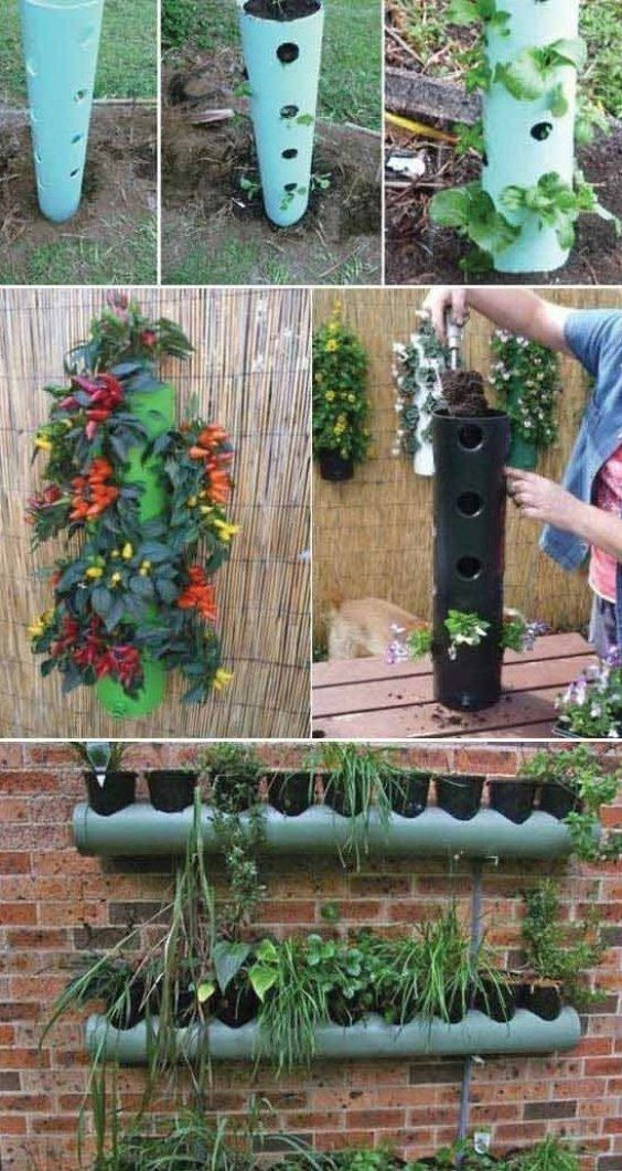 Top 20 Low Cost Diy Gardening Projects Made With Pvc Pipes Garden Ideas Home Gardening Garden Tips G In 2020 Diy Garden Projects Garden Projects Vertical Garden Diy
