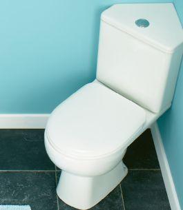 Impact Corner Toilet Pan Short Projection Close Coupled