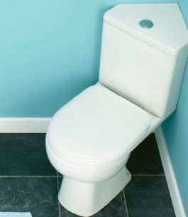 Impact Corner Toilet Pan Short Projection Close Coupled