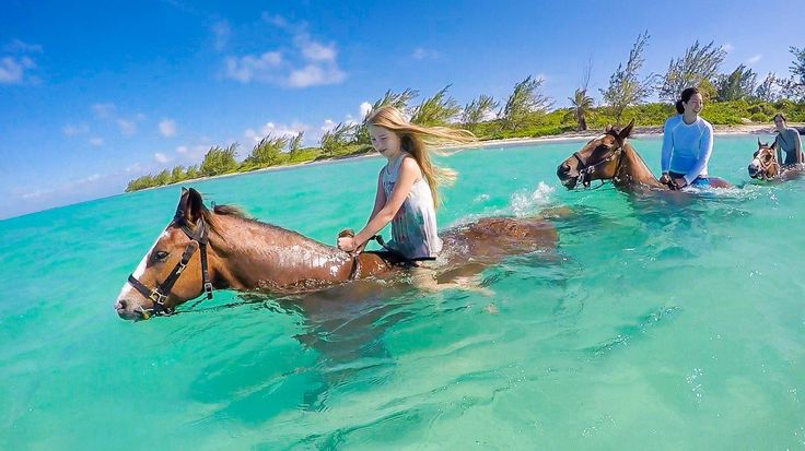 See why riding swimming horses is one of the best things to do in Grand Cayman with kids