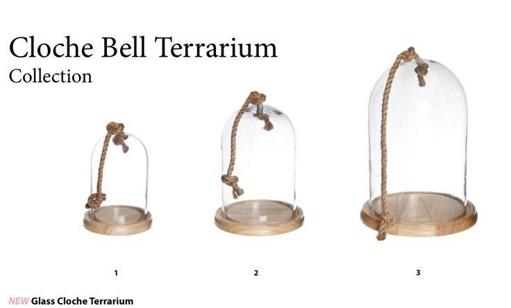 Cloche Bell Terrarium Collection