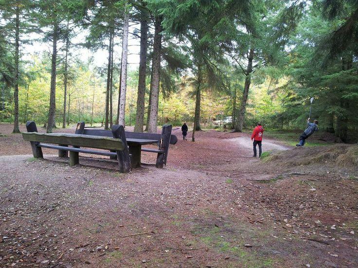 Lejeplads ved Fjand - inde i skoven.