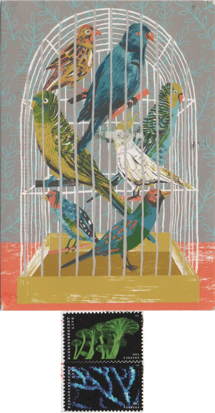 US-5230231 (2018°130) - Arrived: 2018.04.09   ---   Birdcage by Alice Pattullo (2013)