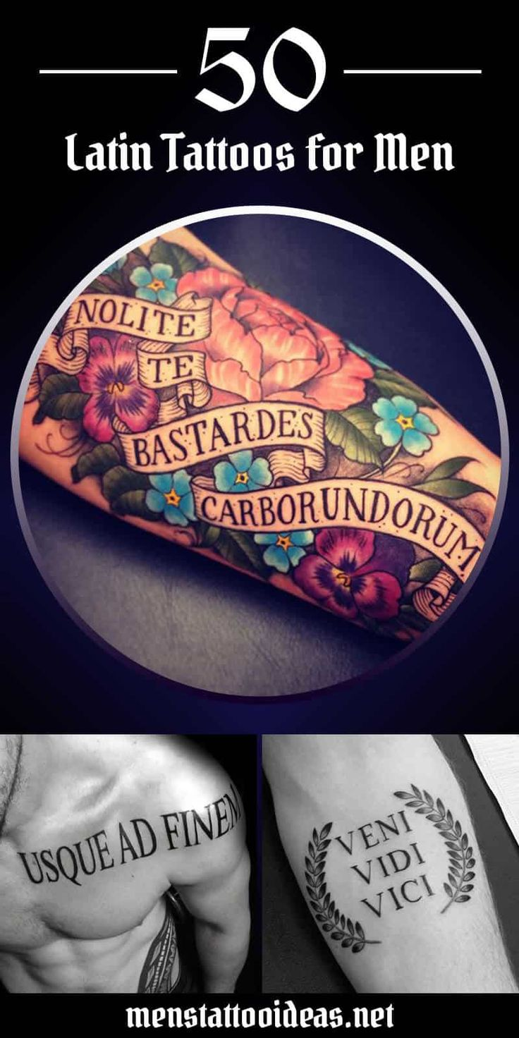 best 25 latin tattoo ideas on pinterest latin phrases latin quotes and latin quote tattoos. Black Bedroom Furniture Sets. Home Design Ideas