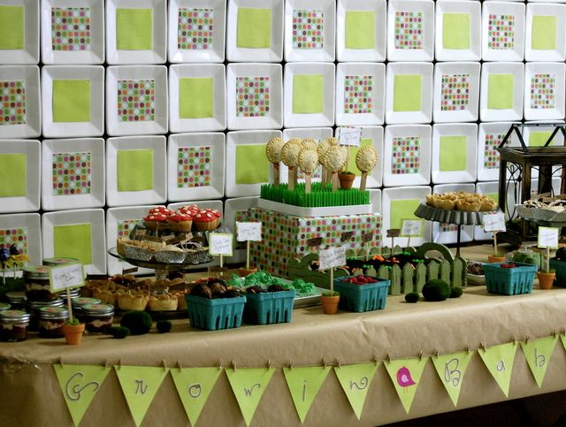 gender neutral baby shower idea! Great for Laura and Carolyn!!