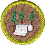 Boy Scouts will learn how to make their own paper when they earn the Pulp and Paper merit badge.    Here's an astonishing number to digest. Each person in the United States uses about 700 pounds of paper each year. Paper is everywhere in our lives. Every year in the United States, more than 2 billion individual books, 24 billion newspapers, and 350 million magazines are published on paper.