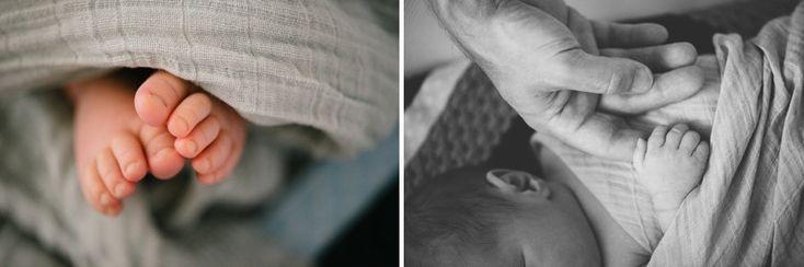 Adelaide Lifestyle Newborn Photographer