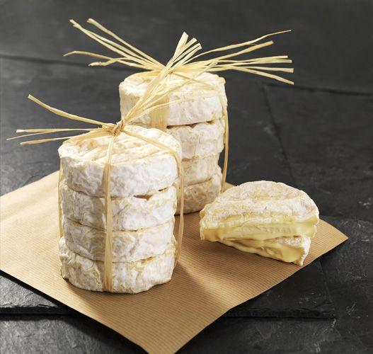 Le fromage Saint-Marcellin protégé par une IGP - radis rose http://magazine.radisrose.fr/saint-marcellin/ #fromage