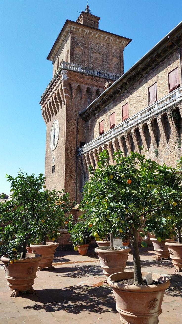 Castello di #Ferrara con i suoi aranci #EmiliaRomagna #Italia