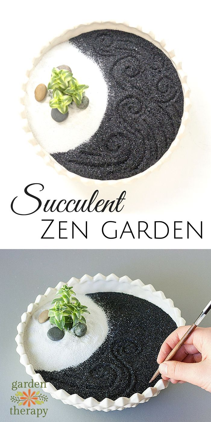 Tap into your inner bliss and capture the intimate essence of nature by creating your very own miniature succulent zen garden. One of my resolutions for this year has been to make more time for self-love and self-care. So far, I've fallen in love with my home yoga practice, enjoyed long soaks in a hot bath, …
