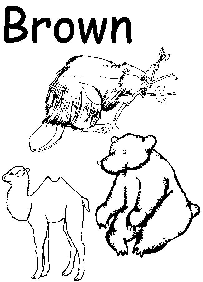 colors coloring pages for preschool