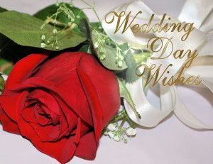 Wedding card messages Wishes 18 best short Messages