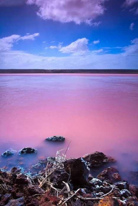 Western Australia's Hutt Lagoon is pink as a blushing bride and saltier than a punch-drunk sailor on shore leave, thanks to an abundance of Beta Carotene-producing algae who consider the lagoon's extreme salinity to be just peachy.